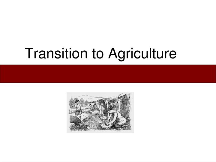 transition to agriculture n.