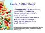 alcohol other drugs1