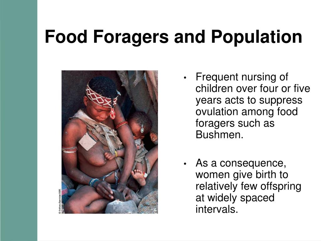 Food Foragers and Population