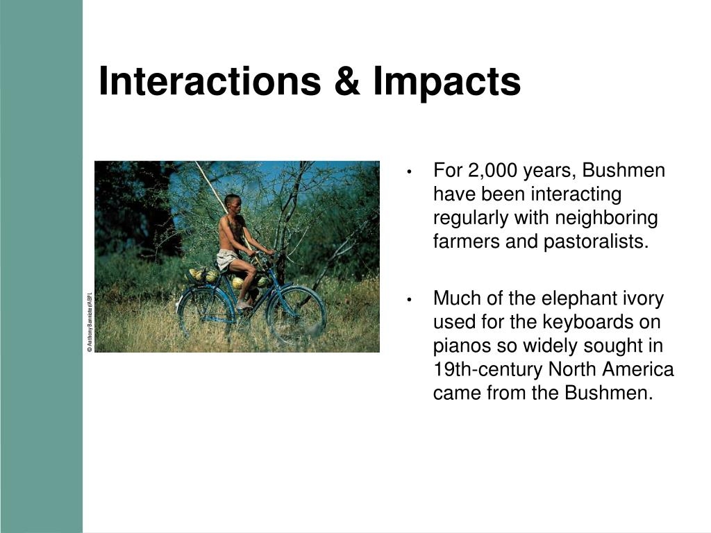 Interactions & Impacts