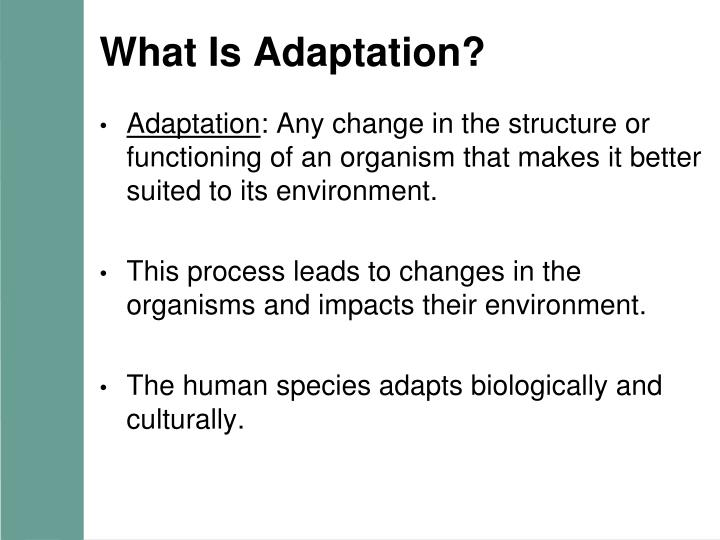 What is adaptation