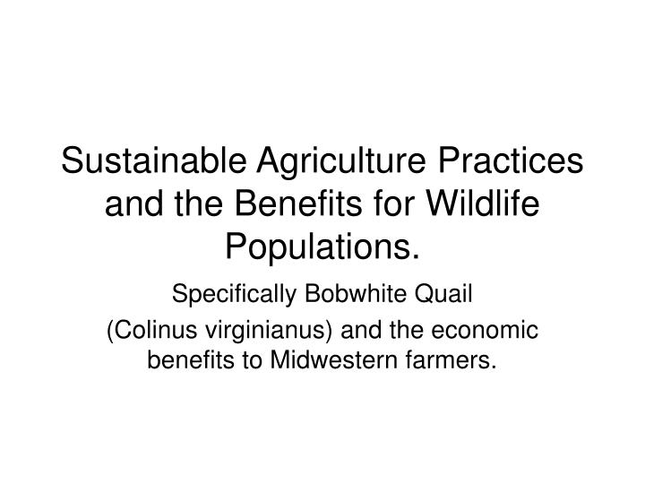 sustainable agriculture practices and the benefits for wildlife populations n.