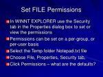 set file permissions