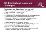 sche in england issues and challenges7
