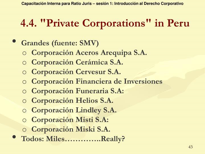 """4.4. """"Private Corporations"""" in Peru"""