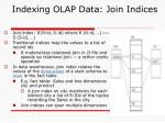 indexing olap data join indices