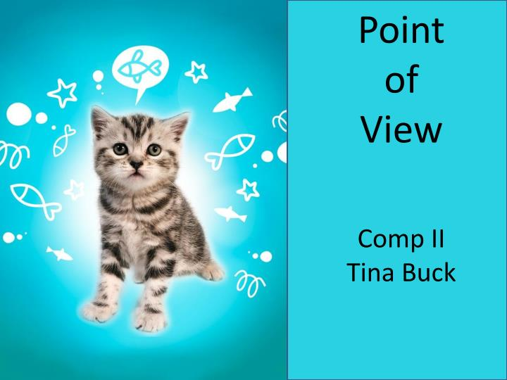 point of view comp ii tina buck n.