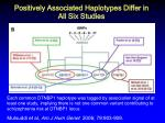 positively associated haplotypes differ in all six studies