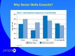 why sector skills councils