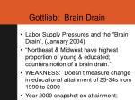 gottlieb brain drain
