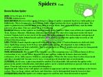 spiders cont