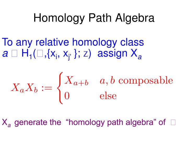 Homology Path Algebra