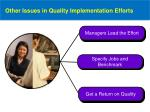 other issues in quality implementation efforts