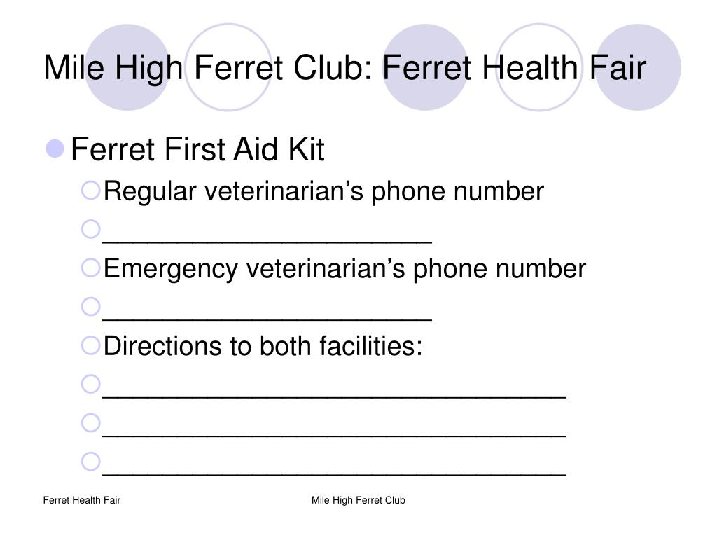Mile High Ferret Club: Ferret Health Fair