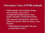 veterinary care of wild animals