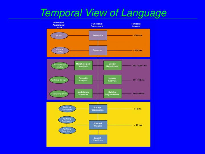 Temporal View of Language