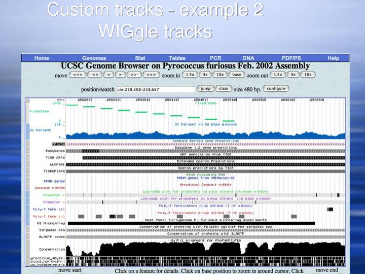 Custom tracks - example 2