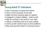 young adult e indicators