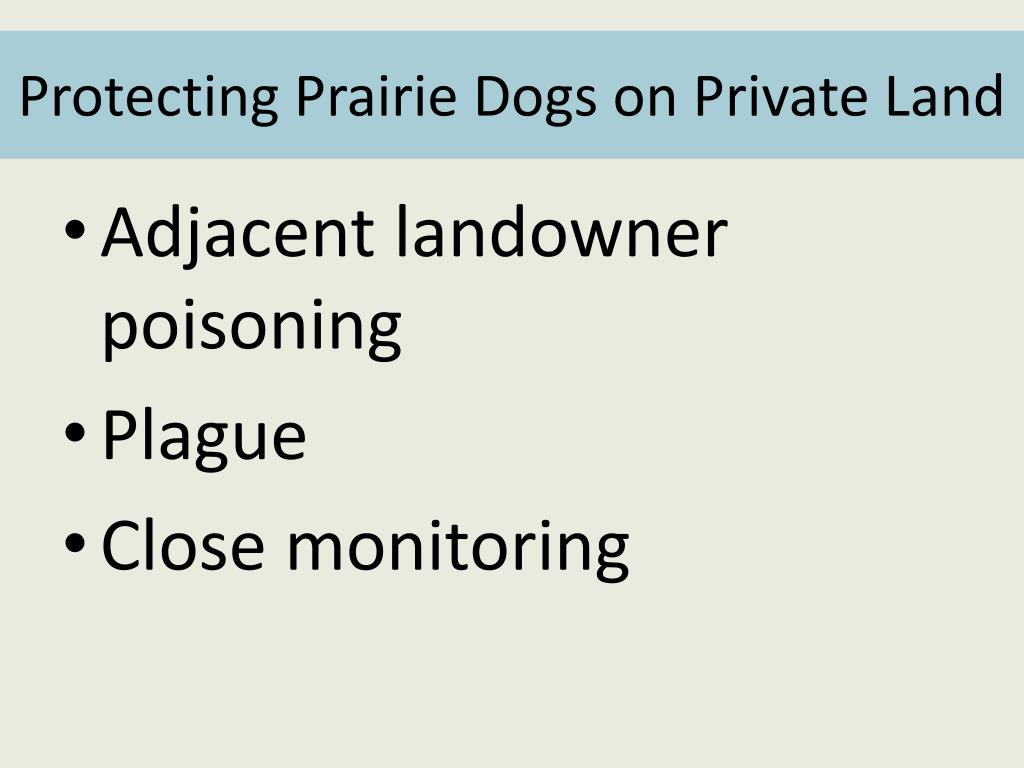 Protecting Prairie Dogs on Private Land