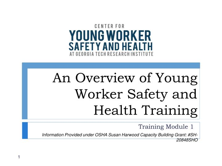 an overview of young worker safety and health training n.