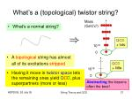 what s a topological twistor string