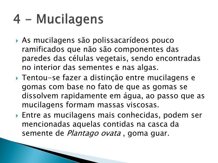 4 - Mucilagens