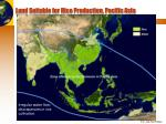 land suitable for rice production pacific asia