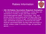 rabies information