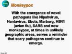 monkeypox33