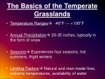 the basics of the temperate grasslands