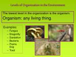 levels of organization in the environment