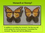 monarch or viceroy