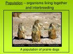 population organisms living together and interbreeding