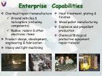 enterprise capabilities