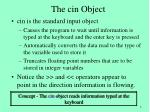 the cin object