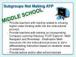 subgroups not making ayp1
