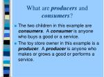 what are producers and consumers