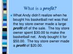 what is a profit