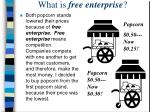 what is free enterprise