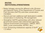 bhutan institutional strengthening