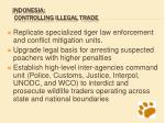 indonesia controlling illegal trade