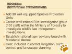 indonesia institutional strengthening