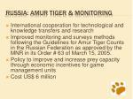 russia amur tiger monitoring