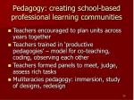 pedagogy creating school based professional learning communities