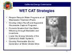 wet cat strategies
