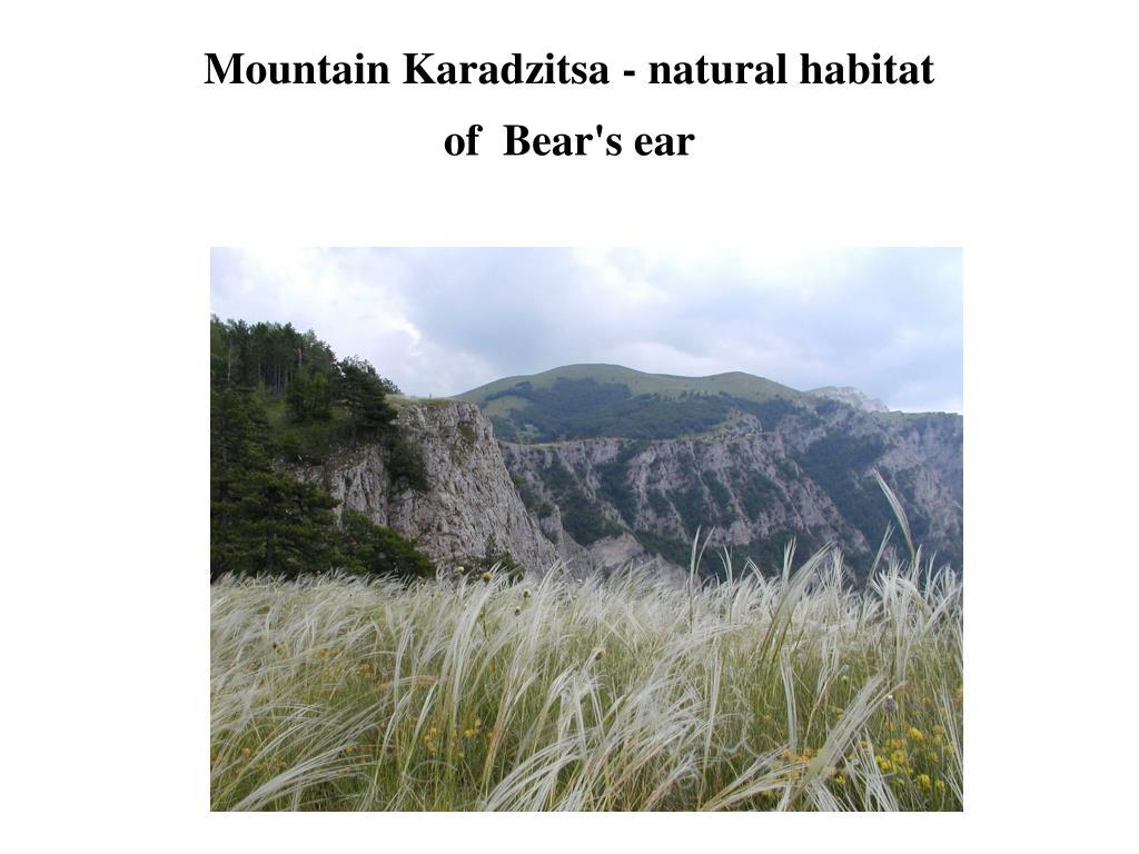 Mountain Karadzitsa - natural habitat