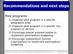 recommendations and next steps2