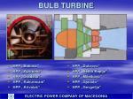 bulb turbine