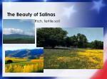 the beauty of salinas