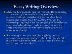 essay writing overview1